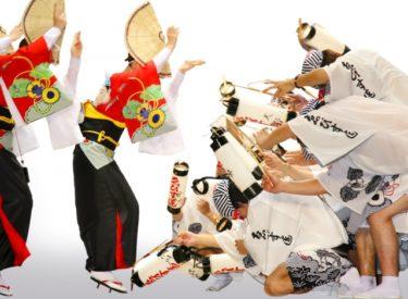 【徳島県庁】幼稚園数214園の子育て天国「徳島県」の地方公共団体