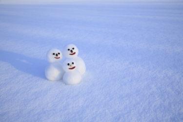 【雪国の冬備え】豪雪地帯への国と自治体の対策と事例について