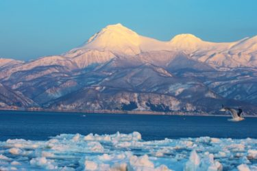 「北海道職員」の北海道庁組織と1年間の仕事の流れについて