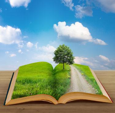 「図書館運営会社」の「営業職」に関する仕事内容・給料レポート