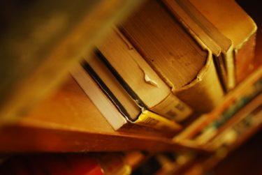 正社員出向で働く「図書館司書」の仕事内容・給料レポート