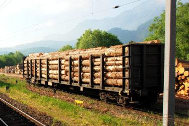 林産物の安定や林業の発展を担当する中央官庁「林野庁」の基本情報