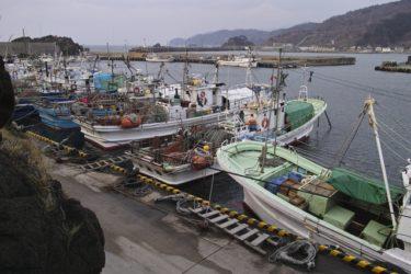 水産資源の適切な保存・管理を担当する中央官庁「水産庁」の基本情報