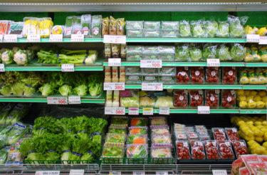 「東証一部上場の食品メーカー」で働く「営業職」の仕事内容・給料レポート