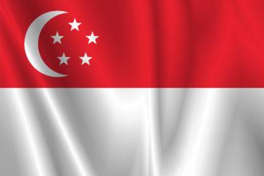 【目指せ!外交官】多民族の国「シンガポール共和国」の基本知識