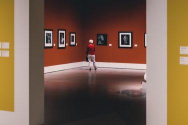 公立美術館「足利市立美術館」の基本情報(沿革・施設・職員数など)