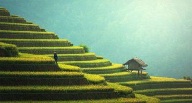 日本人がベトナムで働くことの魅力や注意点